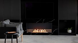 Flex 50SS  - In-Situ Image by EcoSmart Fire